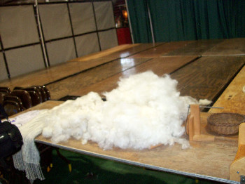 Wool for Sheep to Shawl