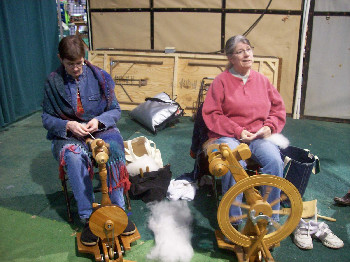 Spinning for Sheep to Shawl