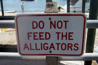 No Gator Feeding
