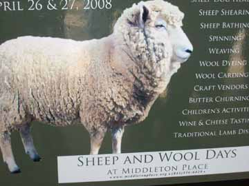 Sheep_and_wool_festival