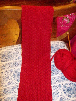 Red_seed_scarf_in_progress_102308